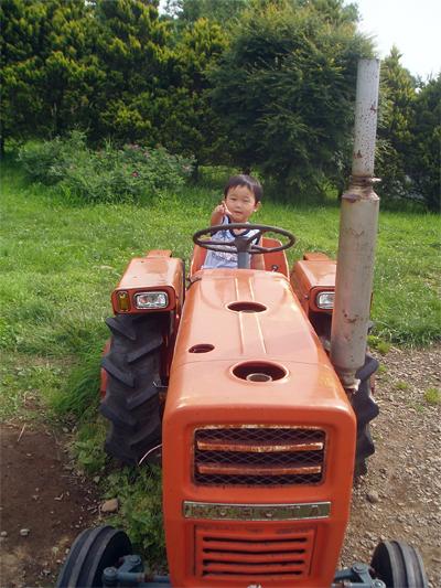 トラクターに乗った息子